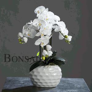 Umetno cvetje by Bonsai